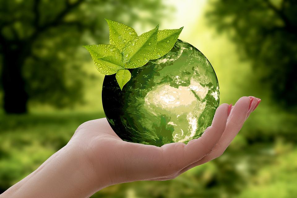 Decoración ecológica