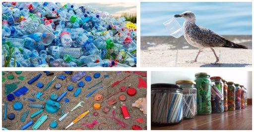 Vías para vivir sin plástico de forma fácil