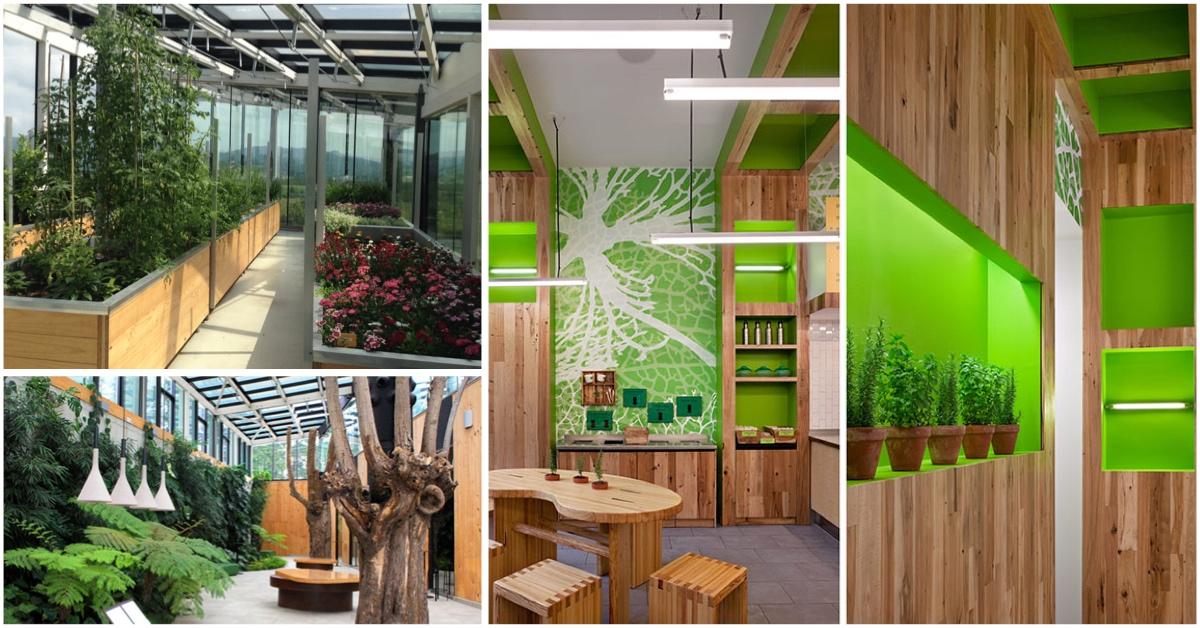 Restaurante sostenible – Tendencia que se expande
