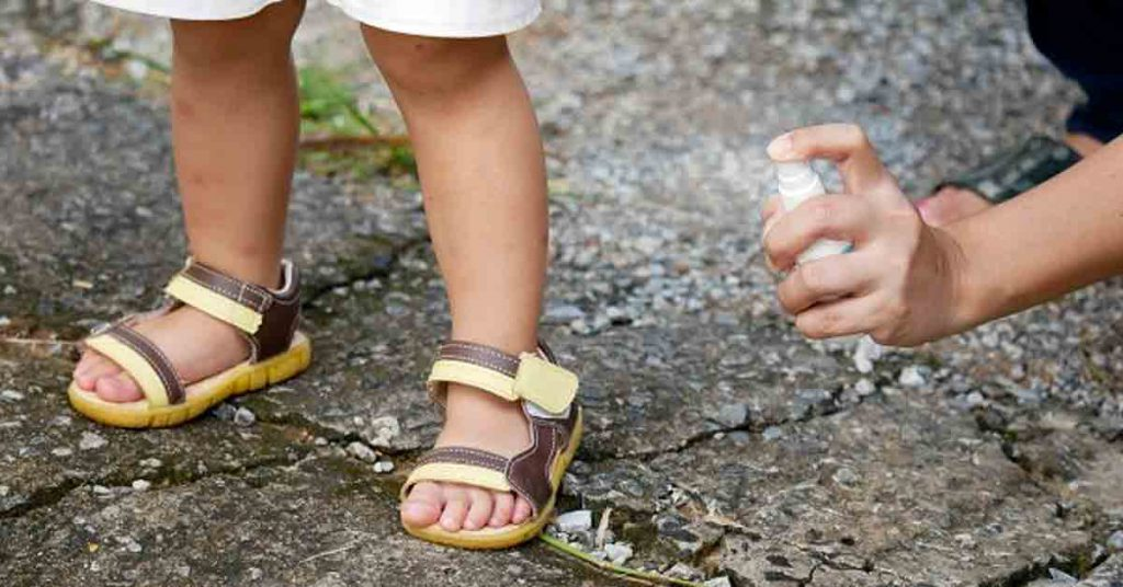Clásicos remedios caseros para que no te piquen los mosquitos
