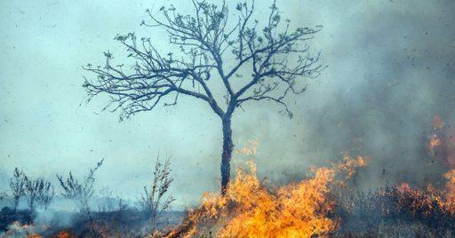 En pleno desastre natural ¿Qué hacer?