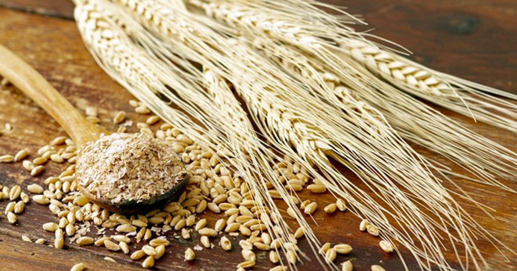 Formas de consumir el salvado de trigo