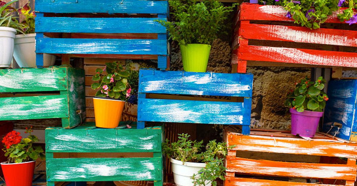 Paso a paso: ¿Cómo hacer un jardín vertical casero?