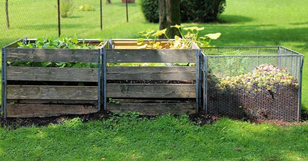 cómo-hacer-compost-casero-cuerpo
