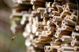 Comment faire un hôtel à abeilles