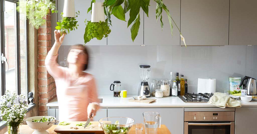 huerto urbano en la cocina