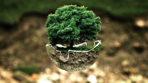 reducir contaminación del medio ambiente