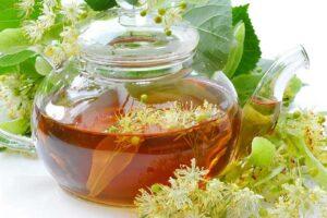 Lindenbaum: Vorteile und Eigenschaften, die Sie überraschen werden