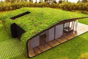 Dicas para tornar a sua casa sustentável